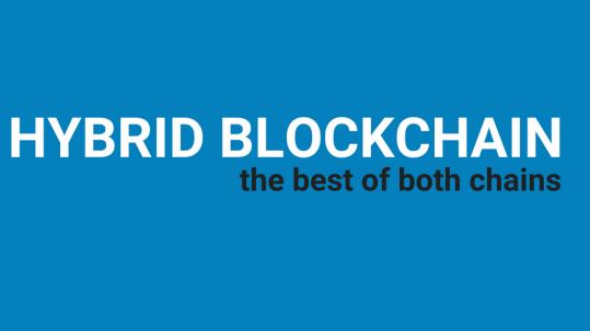 Hybrid Blockchain: The best of both chains